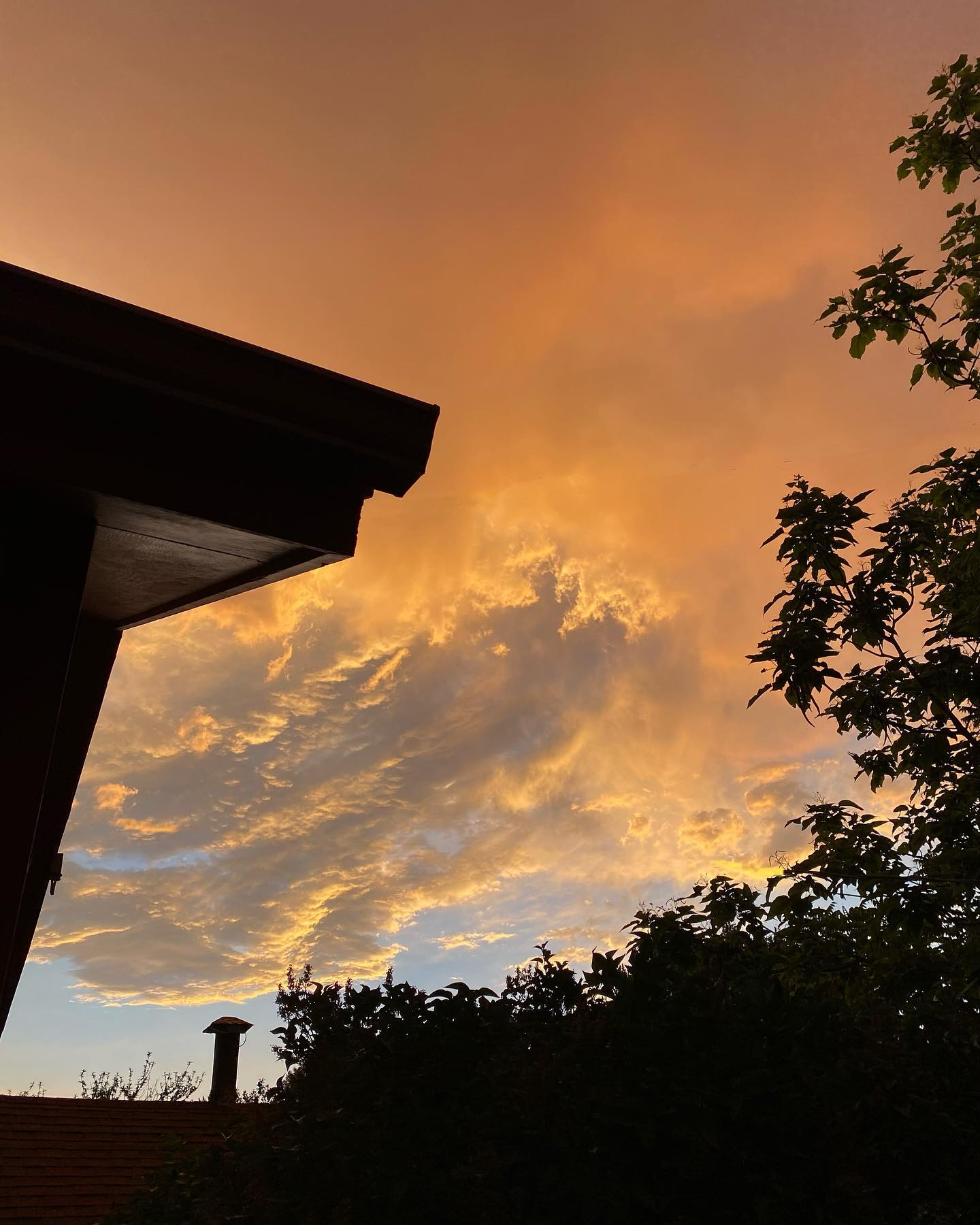 Northern Nevada, last Sunday evening.