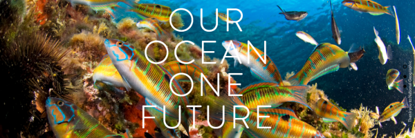 Our Ocean Conference 2016